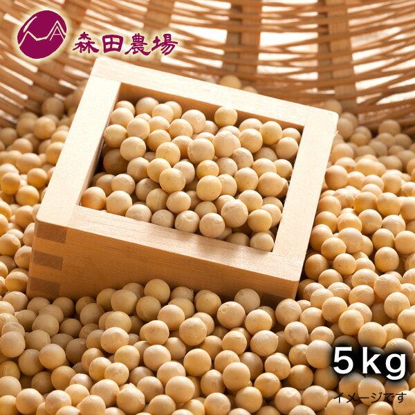 北海道産 黄 大豆5kg 森田農場