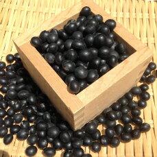 【ゆうパケット 送料無料】500g 北海道産光黒大豆 令和1年産 黒豆 新豆