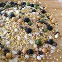 【ゆうパケット 送料無料】300g オリジナル十穀ブレンド 岩手県産100% 希少な極小大豆3種と雑穀7種配合の栄養満点のブレンド
