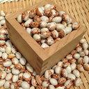 【ゆうパケット 送料無料】新豆900g 北海道産とら豆 令和1年産 いんげん豆 煮豆の大様