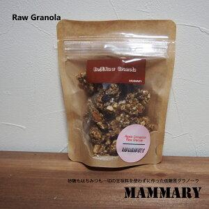 【低糖質グラノーラ】メール便OK 50g 3種類の味 アップルシナモン バナナカカオ マンゴーココナッツ スーパーフード 低GI 低糖質 砂糖不使用 ローフード ダイエット アレルギー対応 オーガニック