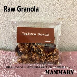 10種類のスーパーフードのグラノーラ【低糖質Rawグラノーラ】 アップルシナモン 30g(持ち運びサイズ)
