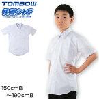 形態安定 抗菌防臭 半袖カッターシャツ 150cmB〜190cmB (ワイシャツ yシャツ シャツ 制服 中学生 高校生 通学 男子 白シャツ 学生 大きいサイズあり フォーマル ノーアイロン シワになりにくい 通学)【取寄せ】