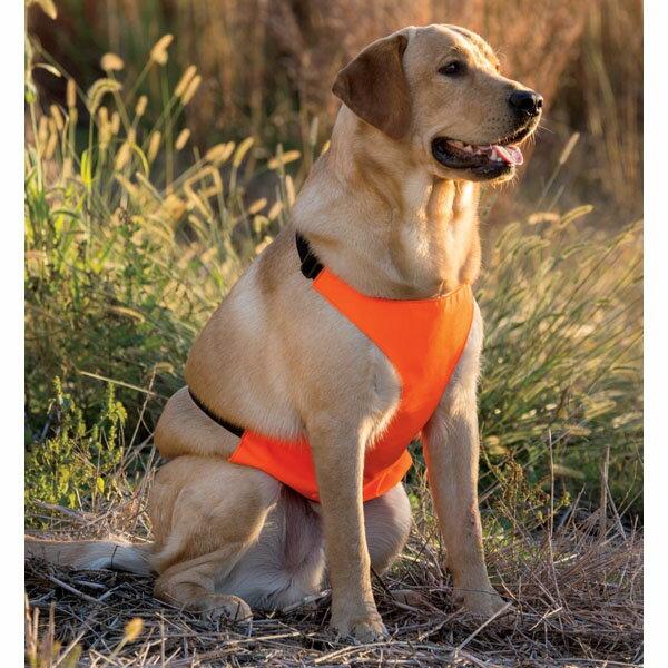 【RedHead (レッドヘッド)】 ドッグチェストプロテクター(胸部保護ベスト) Lサイズ 【犬用 散歩 傷】 (BP152937)