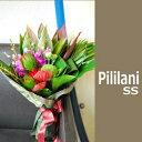 トロピカルな南国ムードたっぷりのハワイアン花束Pililani。南国系の花たちが楽しそうに話しか...