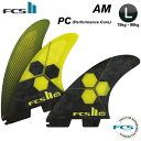 FCS2 FIN AM - PC LARGE  パフォーマンスコア