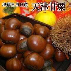 マツコの知らない世界で紹介されたおせち 究極の栗きんとん&黒豆「お取り寄せおせちの世界」