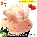 春はいちごの季節☆牧場のしぼりたてミルクたっぷり☆市場直営だからこそ!新鮮いちごも贅沢に使用!絶品!いちごのジェラート!