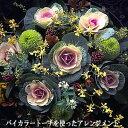 切り花にもなる高性種葉牡丹(ハボタン) バイカラートーチ 1株