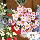 母の日 プレゼント ギフト 花ジャスミン ラベンダー クチナシ等 人気のお花たちスイーツセットにもできますこだわりラッピング全国送料無料