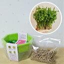 豆苗のタネ 栽培セット 栽培容器とタネ約100ml これで発芽3〜4回分、収穫後も再発芽するから6回以上は収穫出来ます 第4種郵便限定で全国送料無料!野菜 種 ミニ野菜 スターターセット