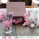 冷感桜/丸モ高木陶器/グラス/天開/ペアセット/正規品/温度
