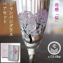 冷感桜/シャンパングラス/丸モ高木陶器/ペアセット/正規品/