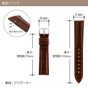 CASSIS製時計バンドアドナラ
