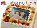 ケーキ 誕生日 写真ケーキ Mサイズ(18cm×18cm) 5〜8人用 (ガナッシュチョコ・モンブラン・レアチーズ)同梱不可  楽天通販 ギフト プレゼント スイーツ 1