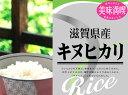 【20kg単位送料無料】グルメ近江米 23年産滋賀県産キヌヒカリ 白米5kgx1袋 玄米/無洗米加工/保存包装 選択可