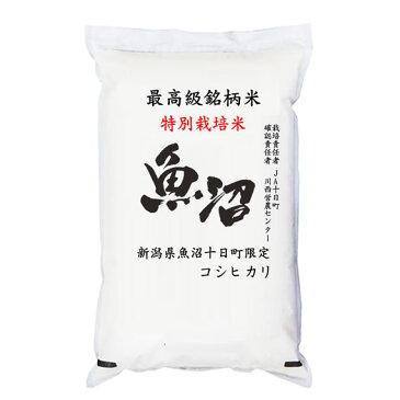 特別栽培米 JA十日町 29年産新潟県十日町魚沼産コシヒカリ 白米2kgx1袋 保存包装 選択可