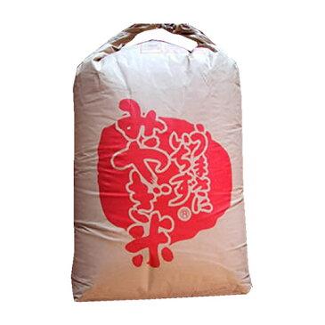 【送料無料】【精米料無料】新米 最高級もち米 30年産宮城県産みやこがねもち 2等 玄米30kgx1袋 無洗米加工/保存包装 選択可