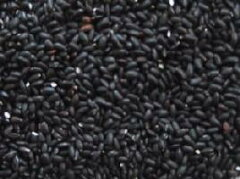 古代米 黒米900g(国内産100% 25年産 山梨県産) 長期保存包装