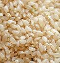 令和元年産 北海道産ななつぼし 玄米1kg単位販売(乳白ポリ袋入)※量り売りとなります。