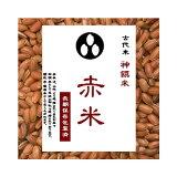 古代米 赤米 (令和2年産 国内産100%) お徳用 900gパック (投函便対応)