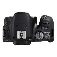 《新品》Canon(キヤノン)EOSKissX9ボディブラック[デジタル一眼レフカメラ|デジタル一眼カメラ|デジタルカメラ]【KK9N0D18P】発売予定日:2017年7月下旬