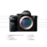《新品》SONY(ソニー)α7SIIボディILCE-7SM2[ミラーレス一眼カメラ|デジタル一眼カメラ|デジタルカメラ]