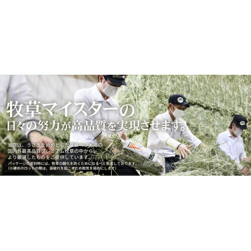 【30年度産新刈り】牧草市場 USチモシー3番刈り牧草スーパーソフト★お試しサイズ100g(三番刈りソフトチモシー)(うさぎ・モルモットなどの牧草)