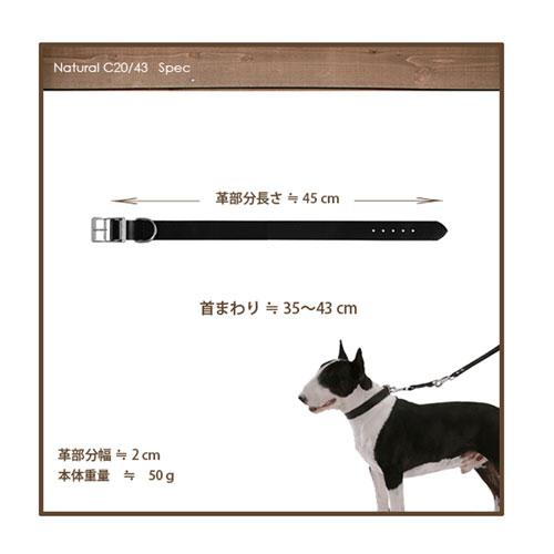 イタリアferplast社製 革 犬具 C20/43 ブラック 犬用 首輪 首回り35から43cm クビワ 犬 くびわ
