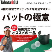 【あす楽対応】【送料無料】タバタGV-0138パットの極意GV-0138[ゴルフ練習用品練習器具パターマットカップ]
