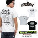 ASNADISPEC Tシャツ メンズ 半袖 ティーシャツ TEE アスナディスペック アスナ プリント 大きいサイズ B系 ブランド 人気 アメカジ ストリート おしゃれ かっこいい /3045/ as-rem-5101
