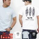 GROOVE ON Tシャツ メンズ 半袖 ティーシャツ TEE グルーブオン サーフボード プリント 大きいサイズ ブランド 人気 アメカジ ストリート系 サーフ系 おしゃれ かっこいい /3045/ gost4603