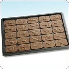 25種類の恐竜化石を型取ったミニチョコレートを全品詰め合わせ【恐竜】【最高級チョコレート使...