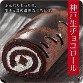 生チョコロールケーキ
