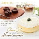 【送料無料】スフレチーズ&フォンダンショコラセット濃厚ふんわりチーズ