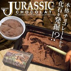 ジュラシックプレミアムボックス(チョコレート)