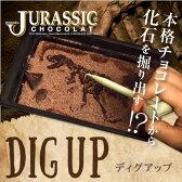 【恐竜】最高級チョコレートを使った、割って!掘って!楽しむチョコレート★ジュラシックショコラ【ディグアップ】(チョコレート)面白チョコ おもしろチョコ【お子様へ】【お子様に人気♪】