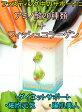 【送料無料】アミノ酸 20種類 ゼリー サプリ フィッシュコラーゲン ファスティング BCAA ダイエット サポート サプリメント 栄養機能食品 Fasting Charge アミノマキア