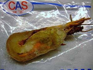CAS(キャス)冷凍 静岡・和歌山産 伊勢海老  ハーフカット 約100〜120g 生食可