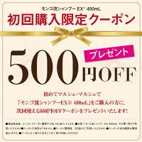 初回購入限定500円クーポン