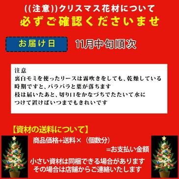 [花材]『オレゴンモミの枝50cm〜60cm 2本(ブランチ)・生』┃予約 クリスマスリース リース手作り クリスマスリース おしゃれ クリスマスリー