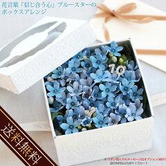 メレンゲクッキーセット/星の形の花びら特別価格ホワイトデーに花言葉信じあう心のプチブルース...