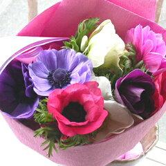 """花プレゼント 若い女性 20代 30代 40代 『花言葉""""明日への希望""""アネモネの花束』生花 フラ..."""