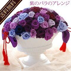 喜寿など特別なギフトに紫色のプリザーブドフラワーのバラのアレンジ敬老の日2015『紫のバラの...