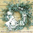 ユーカリのさやわかな香り誕生日プレゼント ユーカリ生のリースリース クリスマス 花 クリスマ...
