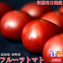 高知県春野産 高濃度 フルーツトマト 約4kg  クール便 家庭用 高糖度 収穫当日発送 100日トマト 母の日 お取り寄せ 送料無料