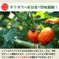 リコピンたっぷりトマト