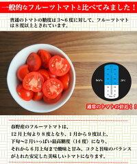 春野産の塩トマト