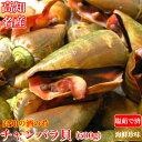 チャンバラ貝 (マガキ貝)500g 同梱用 高級海鮮珍味 高知特産 酒の肴 ちゃんば...