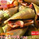 土佐の逸品 チャンバラ貝 (マガキ貝)1kg 高級海鮮珍味 高知特産 酒の肴 ちゃん...